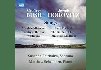 Susanna Fairbairn, Matthew Schellhorn - Lieder  - (CD)