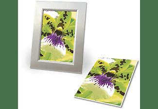 AVERY ZWECKFORM C2552-50 Inkjet Fotopapier 100 x 150 mm 100 x 150 mm  50 Blatt