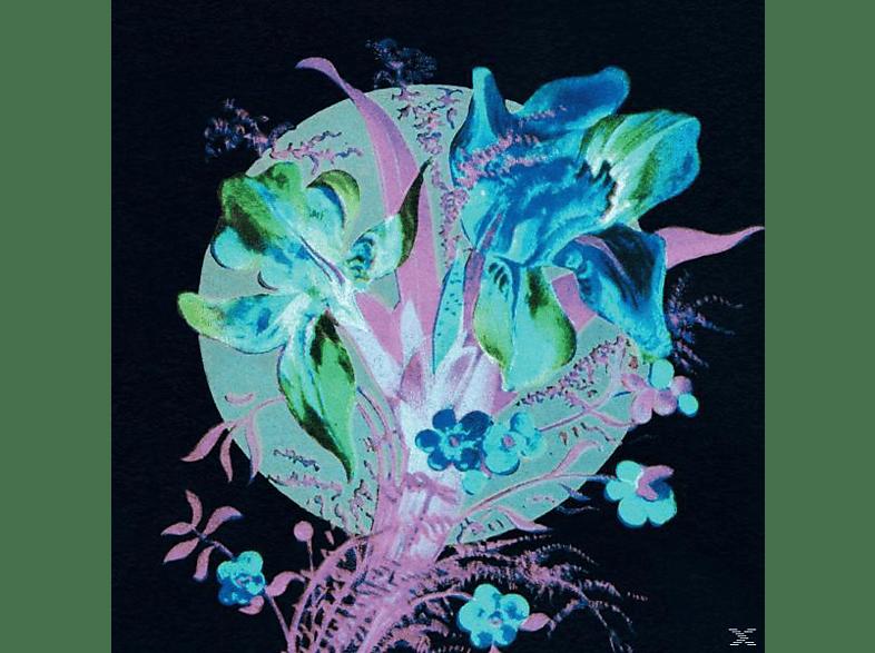 Hannu Karjalainen - A Handful Of Dust Is A Desert [CD]
