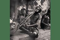 VARIOUS - The Spirit Of Indonesia [Vinyl]