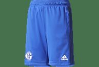 ADIDAS FC Schalke 04 Trainings Short, Blau