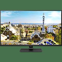LG 43UD79-B 42.51 Zoll UHD 4K Monitor (5 ms Reaktionszeit, 60 Hz)