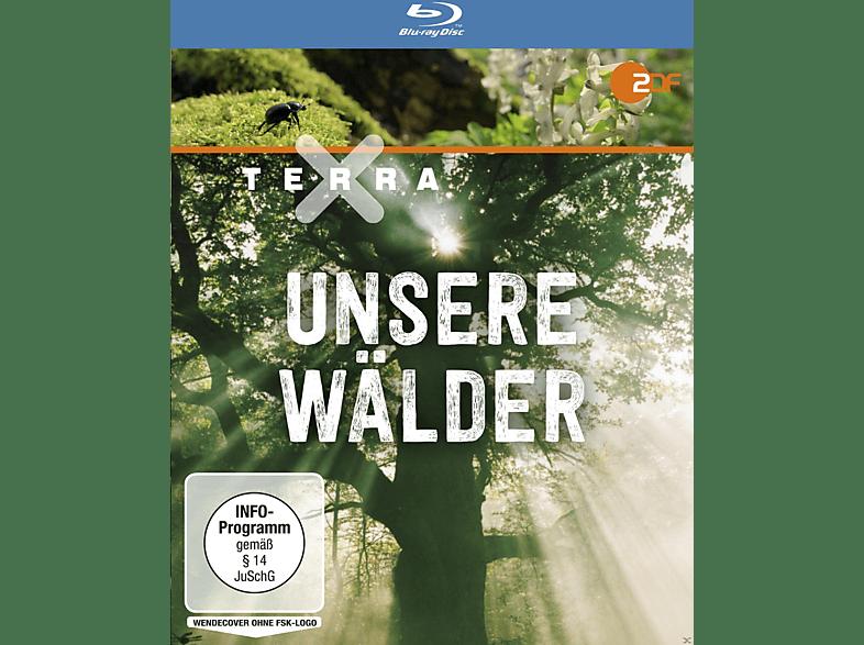 Terra X: Unsere Wälder [Blu-ray]