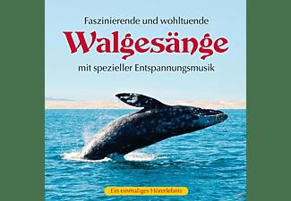 Kings of Nature - Walgesänge (mit spezieller Entspannungsmusik)  - (CD)