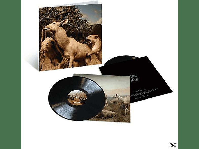 Interpol - Our Love To Admire (10th Anniversary,2LP) [Vinyl]