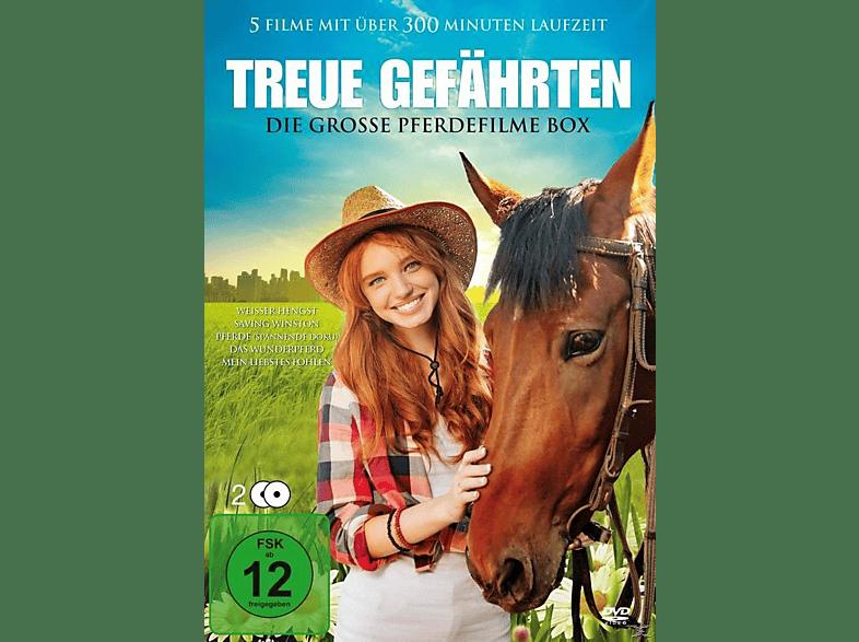Treue Gefährten - Die große Pferdefilme Box [DVD]