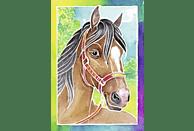 RAVENSBURGER Pferdeportrait Malset, Mehrfarbig