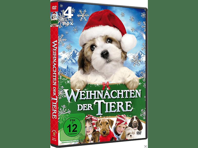 Weihnachten der Tiere [DVD]