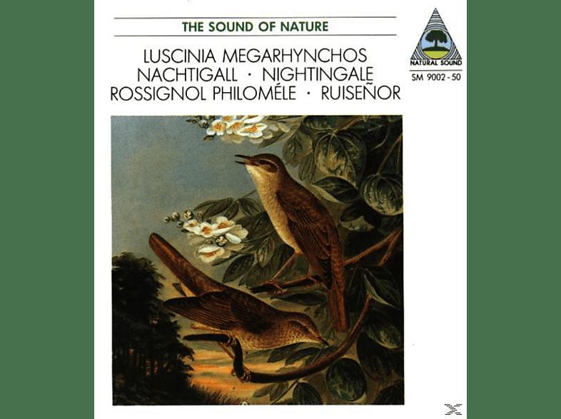Walter Tilgner - Nachtigall [CD]