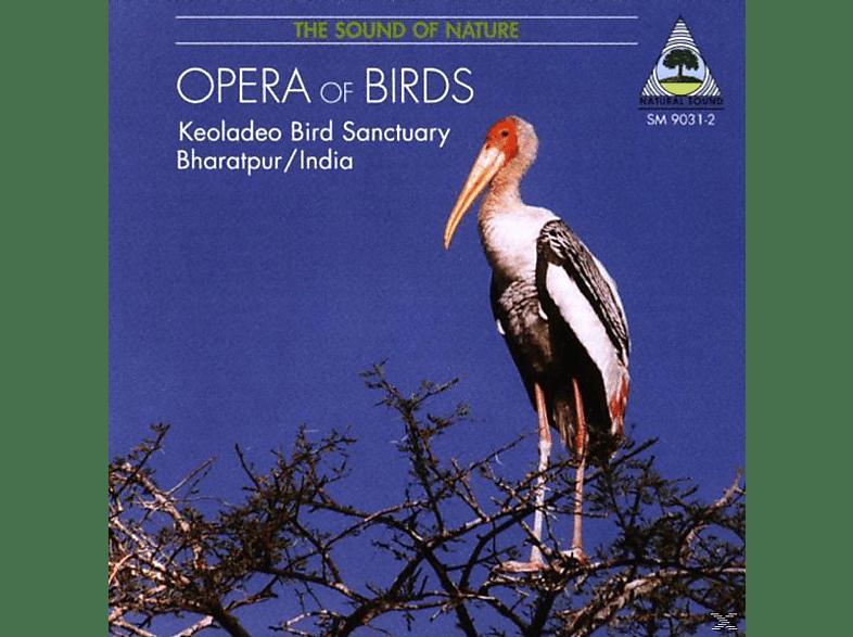 Peter Pannke - An Opera Of Birds [CD]