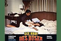 Die Brut des Bösen [Blu-ray]