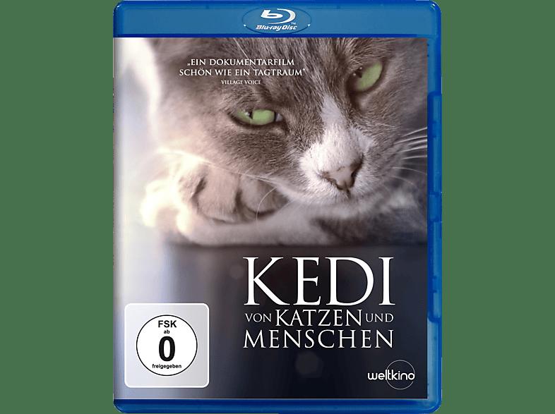 Kedi - Von Katzen und Menschen [Blu-ray]