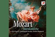 Peter Damm, Staatskapelle Dresden - Meisterwerke: Mozart-Hornkonzerte [CD]