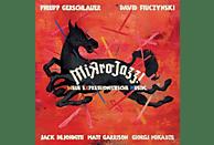 Gerschlauer,Philipp & Fiuczynski,David - Mikrojazz (Neue Expressionistische Musik) [Vinyl]