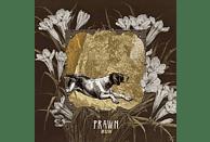 Prawn - Run [CD]