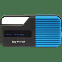 SKY VISION DAB 11B, Radio