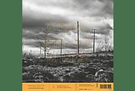 Craven Faults - Netherfield Works [Vinyl]
