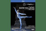 Hallberg David - The Art of David Hallberg at the Bolshoi [Blu-ray]