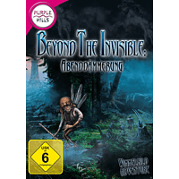 Beyond the Invisible - Abenddämmerung - [PC]