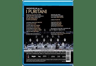 Damrau/Camarena - I Puritani  - (Blu-ray)