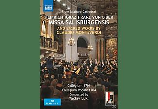 Collegium 1704, Collegium Vocale 1704 - Missa Salisburgensis/Geistliche Werke  - (DVD)