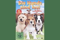 Die Hunde sind los! [DVD]