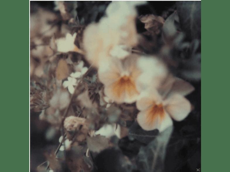 Every Hidden Color - Luz [Vinyl]