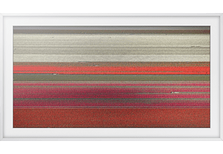 pixelboxx-mss-76428677