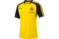PUMA Borussia Dortmund Trainingshirt, Gelb/Schwarz