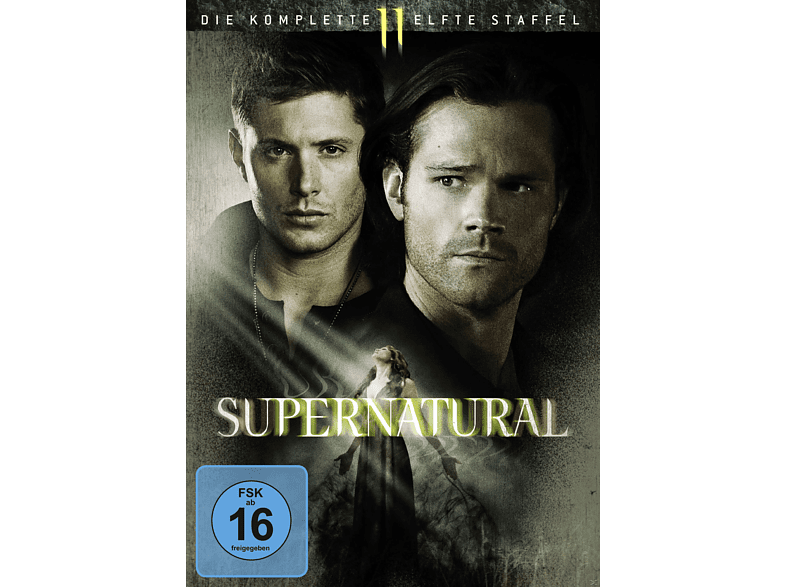 Supernatural: Die komplette 11. Staffel [DVD]