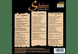 Pauk, Susane Lauterbacher, Bell'Arte Str Trio, Paul Olevsky, Walter Hautzig - Schubertkammermusik  - (CD)