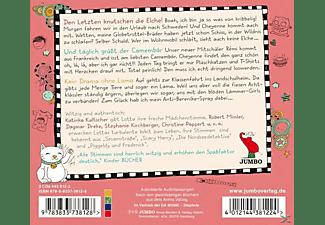 Katinka Kultscher - Mein Lotta-Leben Box (Folge 6,7 Und 8)  - (CD)