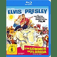 Ein Sommer in Florida [Blu-ray]