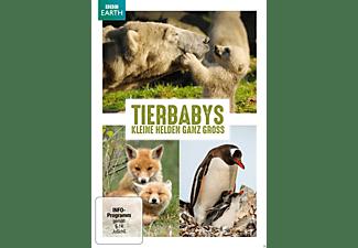 Schneebabys/ Tierbabys – Kleine Helden ganz groß DVD