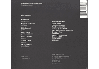 Aina Kemanis, Hans Ulrik, Eivind Aarset, Elvira Plenar, Klavs Hovman, Audun Kleive, Molvaer Nils Petter - Small Labyrinths  - (CD)
