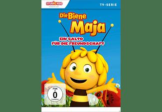 Die Biene Maja 3D - DVD 15 DVD