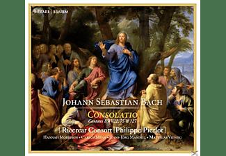 Philippe Pierlot, Carlos Mena, Ricercar Consort, Hans-jörg Mammel, Hannah Morrison, Matthias Vieweg - Consolatio  - (CD)