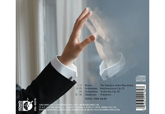 Bruce Levingston - Windows  - (CD)