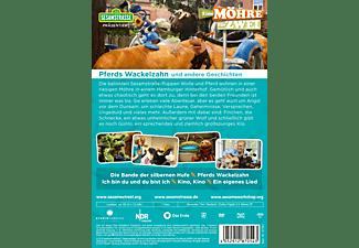 Sesamstraße präsentiert: Eine Möhre für Zwei – Pferds Wackelzahn und andere Geschichten DVD