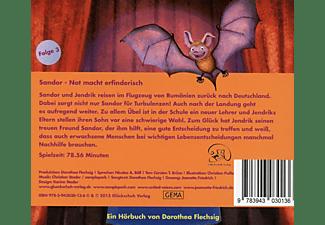 Dorothea Flechsig - Sandor   - (CD)