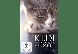 Kedi - Von Katzen und Menschen DVD