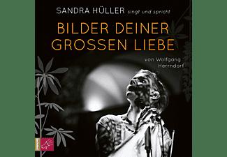 Sandra Hüller - Bilder Deiner Großen Liebe  - (CD)
