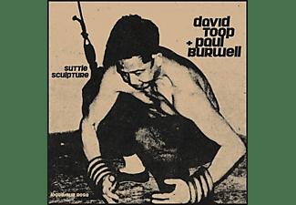 David Toop + Paul Burwell - Suttle Sculpture (LP)  - (Vinyl)