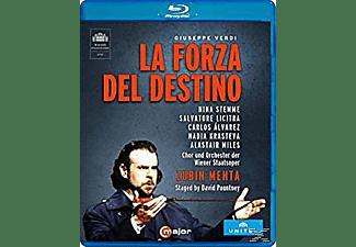 Mehta/Alvarez/Stemme/Licitra/K - La Forza del Destino  - (Blu-ray)