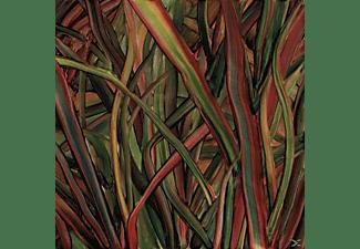 Gengahr - Where Wildness Grows  - (CD)