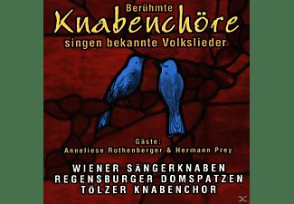 VARIOUS - Volkslieder  - (CD)