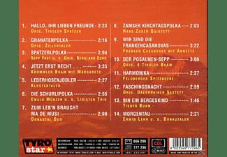VARIOUS - Polkafest Im Alpenland  - (CD)