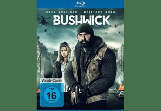 Bushwick Blu-ray