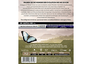 Evolution 4K – Die Entstehung unserer Welt 4K Ultra HD Blu-ray + Blu-ray
