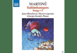 Hrochova,Jana/Koukl,Giorgio - Lieder Vol.5  - (CD)